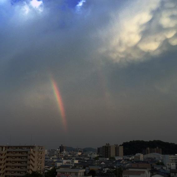 虹7020.jpg